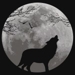 Howling wolf kid graphic t-shirt design
